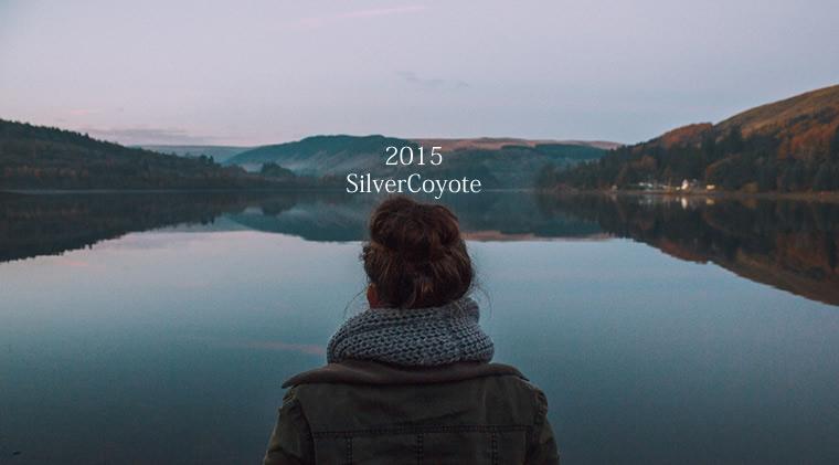 2015年反省会:安定感でてきたSilverCoyote