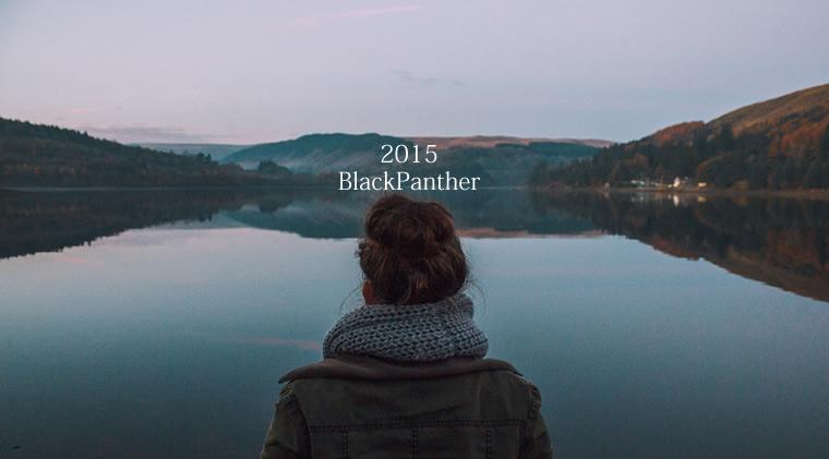 2015年反省会:不運だっただけのBlackPanther